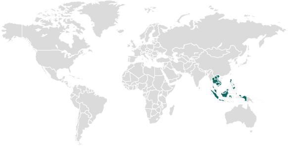 Biocairmap Singapore-1