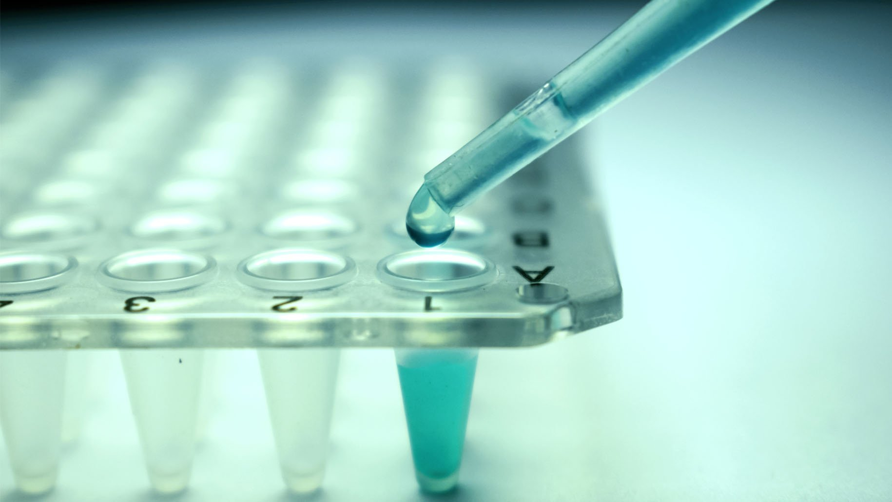 Stem Cell Research Pipette